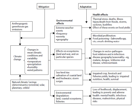 Figure 6: Pathways by which climate change affects human health (Source: Haines et al., 2006)